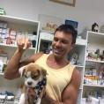 Dr. Vainer Attila állatorvos