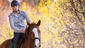 Március 22.-én induló képzésünk: sportoktató (lovassport) tanfolyam